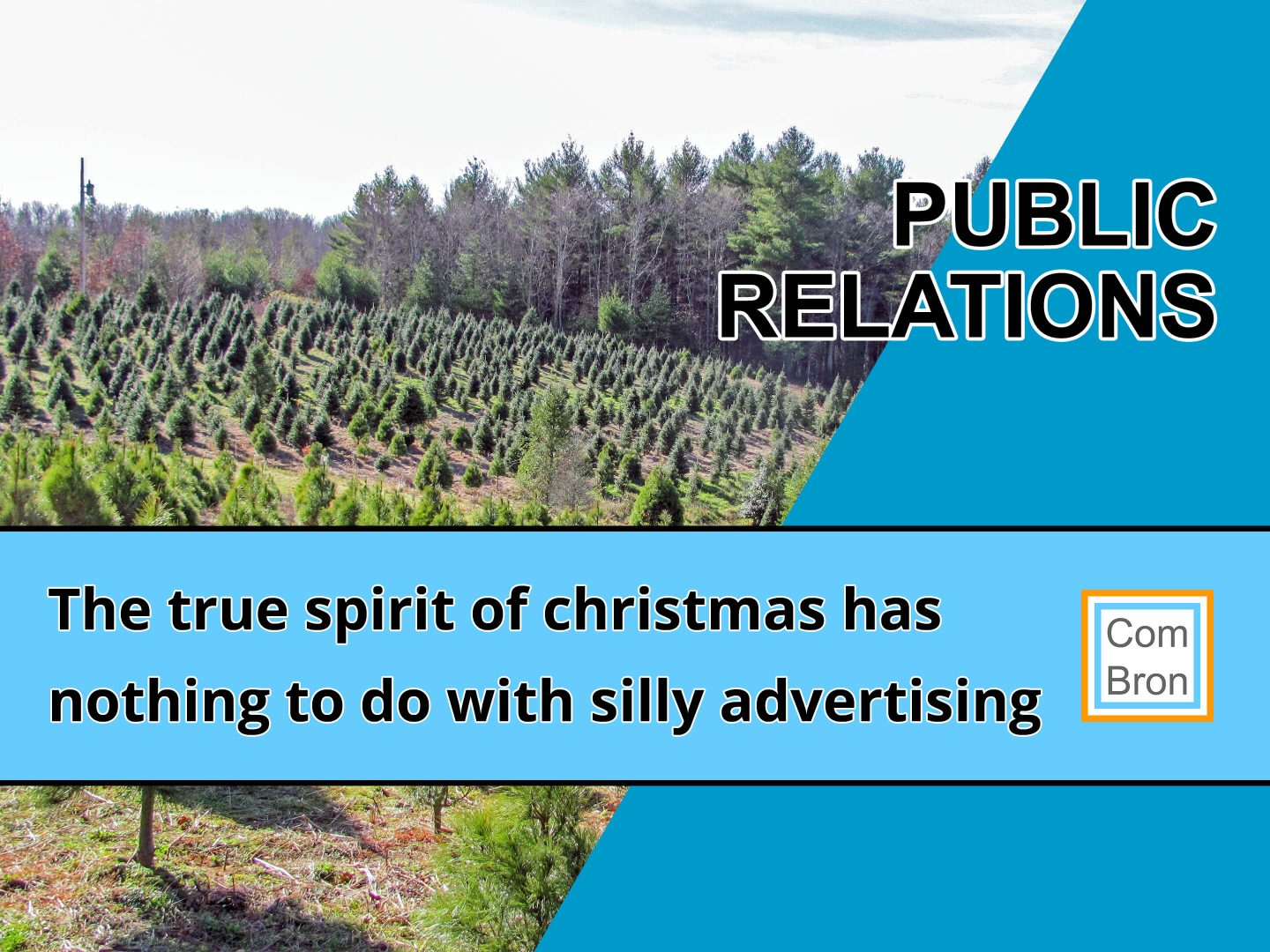 Photo of a hill with Christmas trees but no snow. For the blog about the Sinterklaas and Christmas campaign.